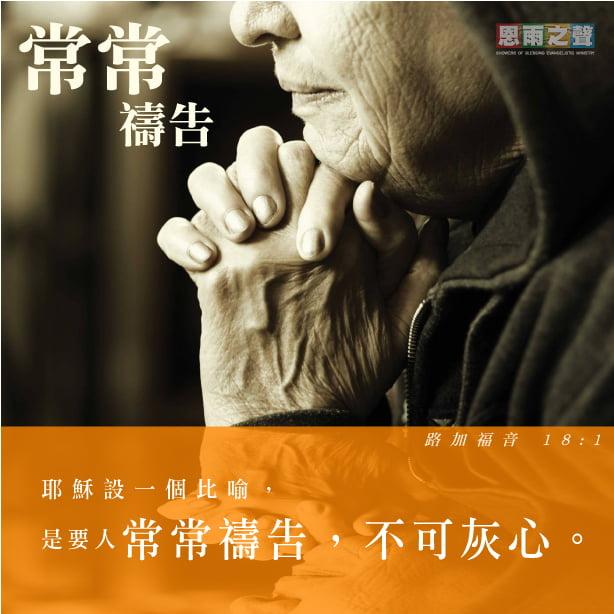 恩雨生命關顧系列 愛行天下 路加福音 18:1 耶穌設一個比喻,是要人常常禱告,不可灰心。